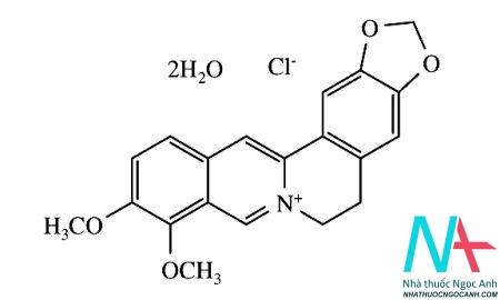 Công thức cấu tạo của Berberin