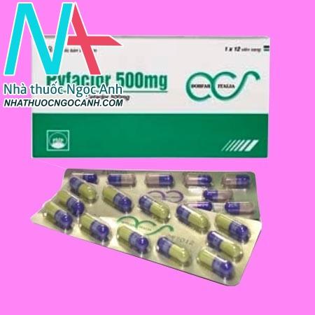 Hộp và vỉ thuốc Pyfaclor 500mg