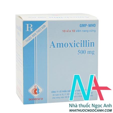 thuốc amoxicillin 500mg domesco
