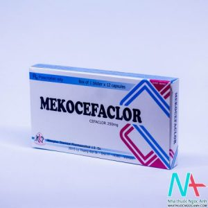 Mekocefal
