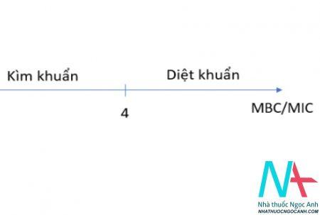 cơ chế tác dụng của kháng sinh