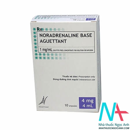 Noradrenaline base aguettant