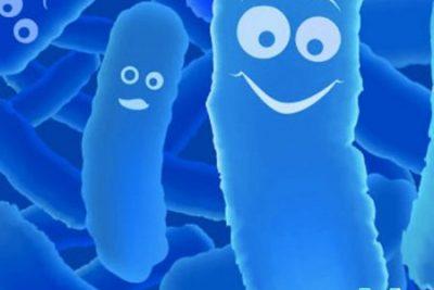 Probiotic không có tác dụng phòng ngừa nhiễm khuẩn ở nhũ nhi