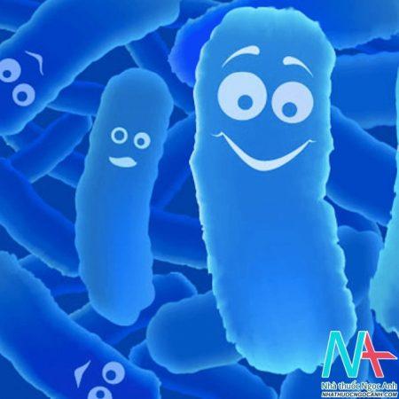 Probiotic - vi khuẩn có lợi