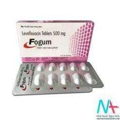 Thuốc Fogum 500mg