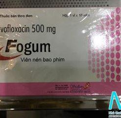 Hộp thuốc Fogum 500mg