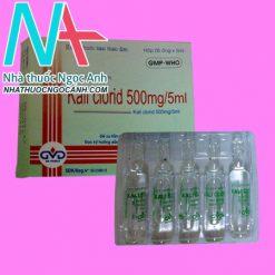Kali clorid 500mg/5ml