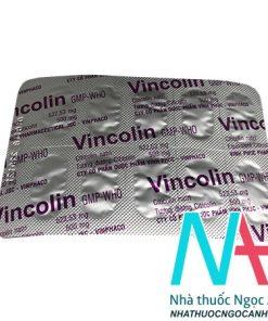 vỉ Vincolin