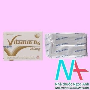 thuốc Vitamin B6 Mekophar 250mg