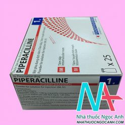 Hộp Piperacillin Panpharma 1g