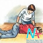 Hướng dẫn cách sơ cứu và vận chuyển người bệnh bị tai nạn, chấn thương