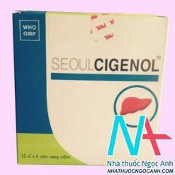 Thuốc seoulcigenol có tác dụng gì