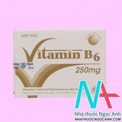 Vitamin B6 Mekophar 250mg là thuốc gì