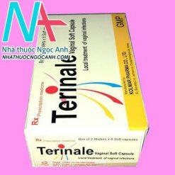 Hộp thuốc Terinale
