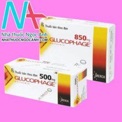 Hộp thuốc Glucophage