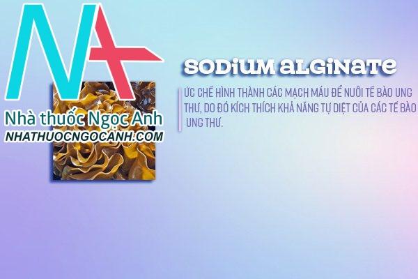 Tác dụng dược lý của Alginate - thành phần Bảo Y