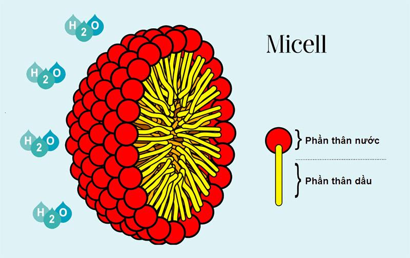 Cấu trúc của chất nhũ hóa