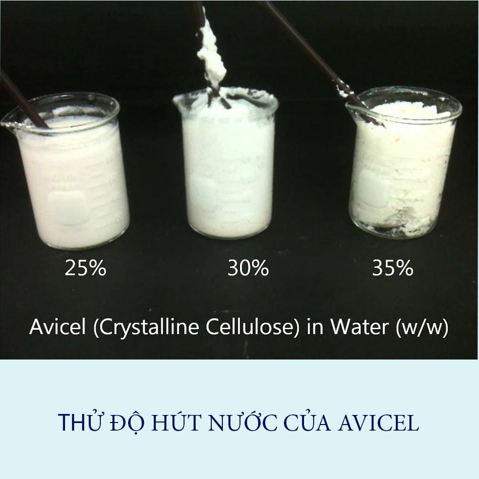 Thử độ hút nước của avicel