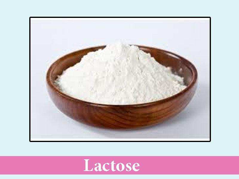 Tá dược độn Lactose
