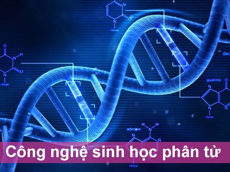 Công nghệ sinh học phân tử