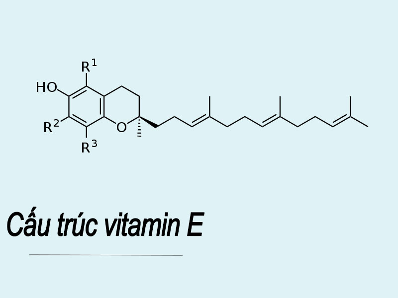 Cấu trúc vitamin E