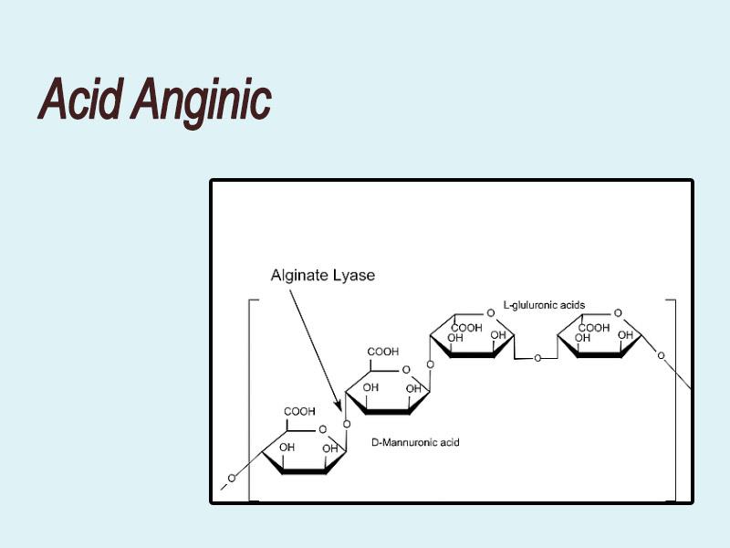 Cấu trúc phân tử của Acid alginic