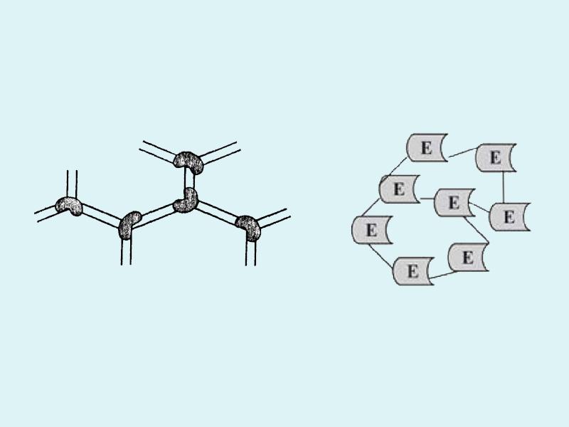 Phương pháp tạo liên kết ngang (liên kết chéo)