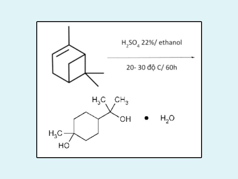 Sơ đồ phản ứng tạo Terpin hydrat