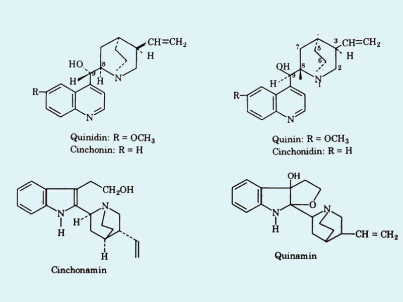 Thành phần hóa học của cây Canhkina