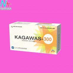 KAGAWAS-300
