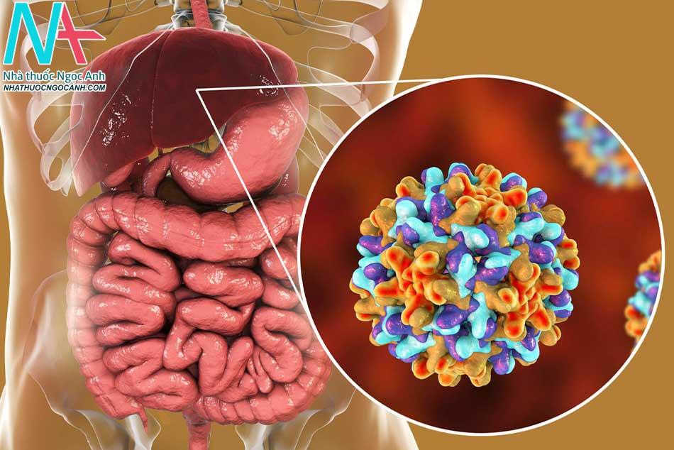 Tổng quan về bệnh Viêm gan B